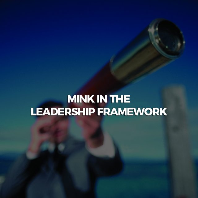 Mink-in-the-leadership-framework